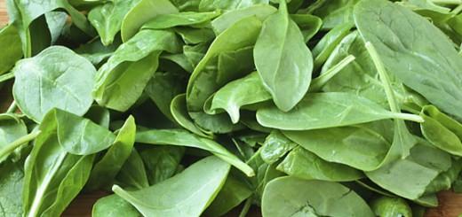 Espinafre-Espinafre
